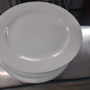 Syscoware 12 inch Plates